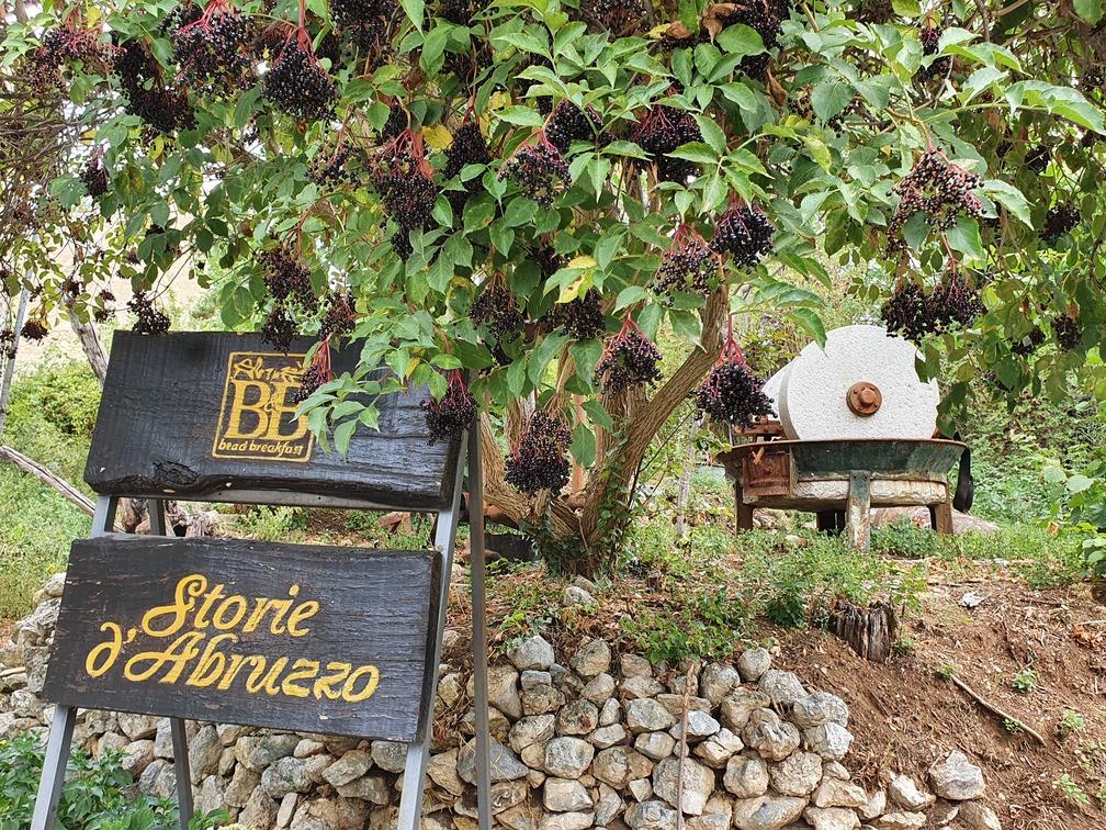 b&b Storie d'Abruzzo